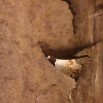 Lost places Völklinger Hütte Bettina Ghasempoor 55