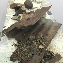 Artefakte aus Verdun, Kriegsschauplatz 1. WK und Waldboden. Wald ist entstanden anstelle des Dorfes Beaumont-en-Verdunois, 100 Jahre danach ...