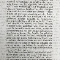 """Textauszug """"Der Fremdarbeiter"""" von Blanka Weller"""