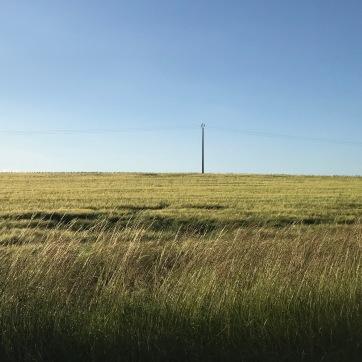 Landschaft Verdun 100 Jahre danach