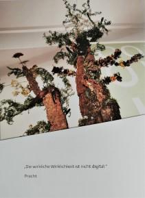 Die wirkliche Wirklichkeit ist nicht digital.